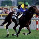 キングカメハメハはレベルの高い古馬の王道路線勝てないから失敗種牡馬