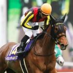 ジェンティルドンナの初仔の馬名が「モアナアネラ」に決定www