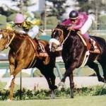 【討論】1995年阪神大賞典ナリタブライアンに勝てそうな馬