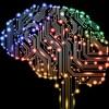 AIがもっと発展したら競馬予想で人間が勝ち目なくね?