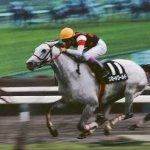 三大期待はずれだった馬→スピードワールド、ゴールデンバローズ、あと1頭は?
