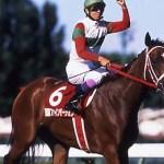 ファインモーションとかいう繁殖のため輸入したのに競走馬として活躍した馬