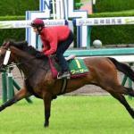 【悲報】日本競馬、終わる
