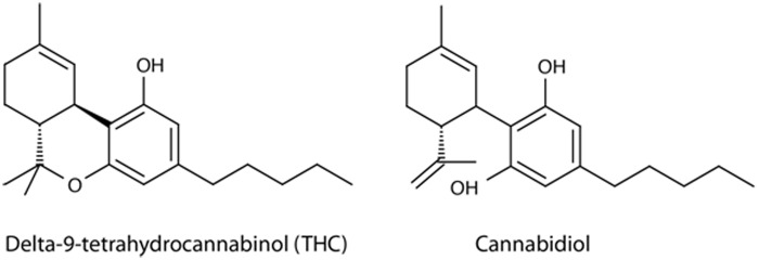 THC and CBD Structures