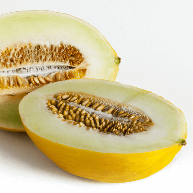 canary melon pictures