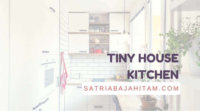 tiny house kitchen ideas, pictures, designs, appliances, layout
