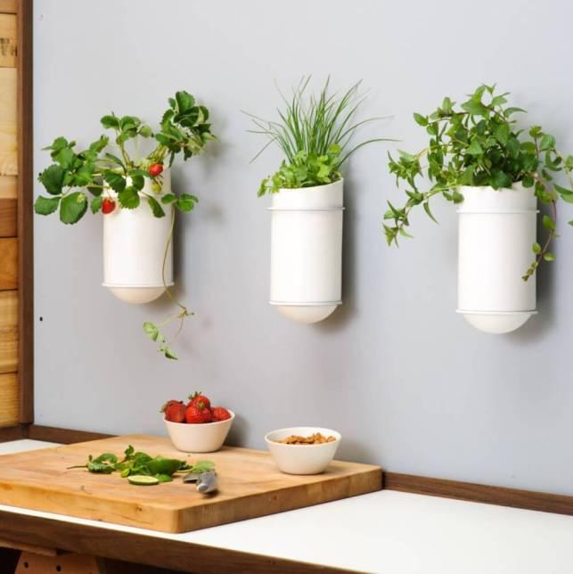 Beautiful Kitchen Wall Planters - kopyokcom