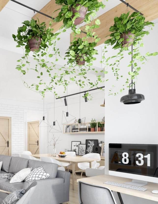 Scandinavian with Indoor Plants - pinterestcom