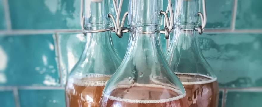 Rezept für Kombucha, Wirkung und Gesundheit von Kombucha