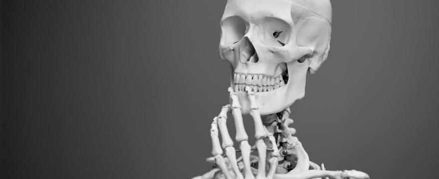 Mineralstoffe für gesunde Knochen, Osteoporose vorbeugen