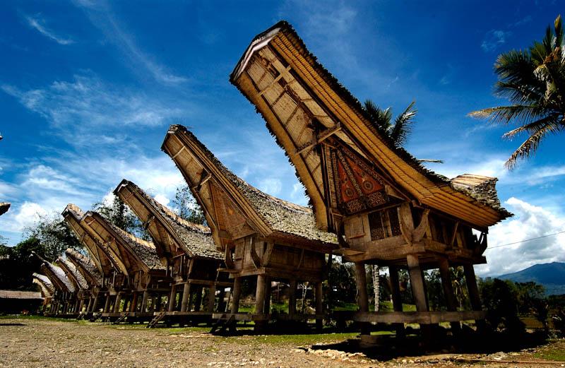 Keunikan Suku Toraja