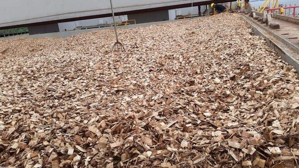 Ekspor Perdana Kayu Chips Akasia Asal Kaltim ke Tiongkok
