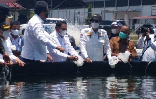 DPD RI Meninjau Pembangunan Tambak Udang Vaname di Aceh Timur
