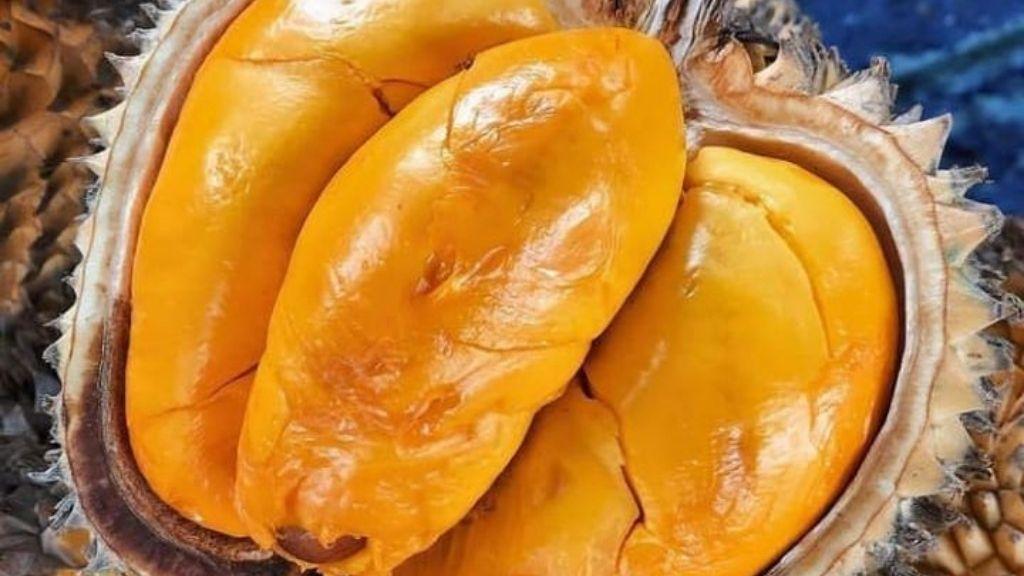 Gak Suka Durian? Santap Saja Buah Lai Asli Kalimantan
