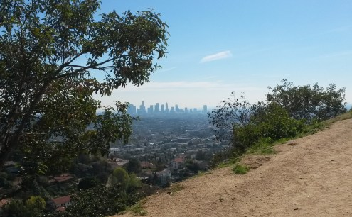 View of LA from Griffith Park