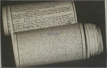 Das Anuskript