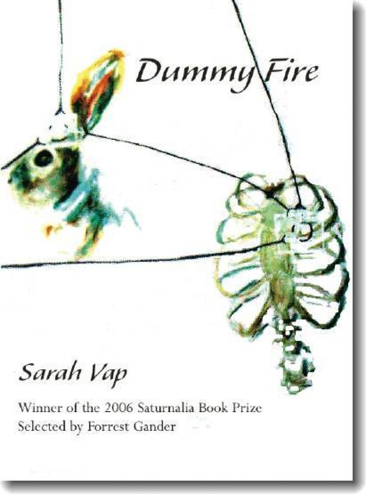 dummy fire