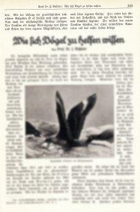 Der tönende Film (1929) 5