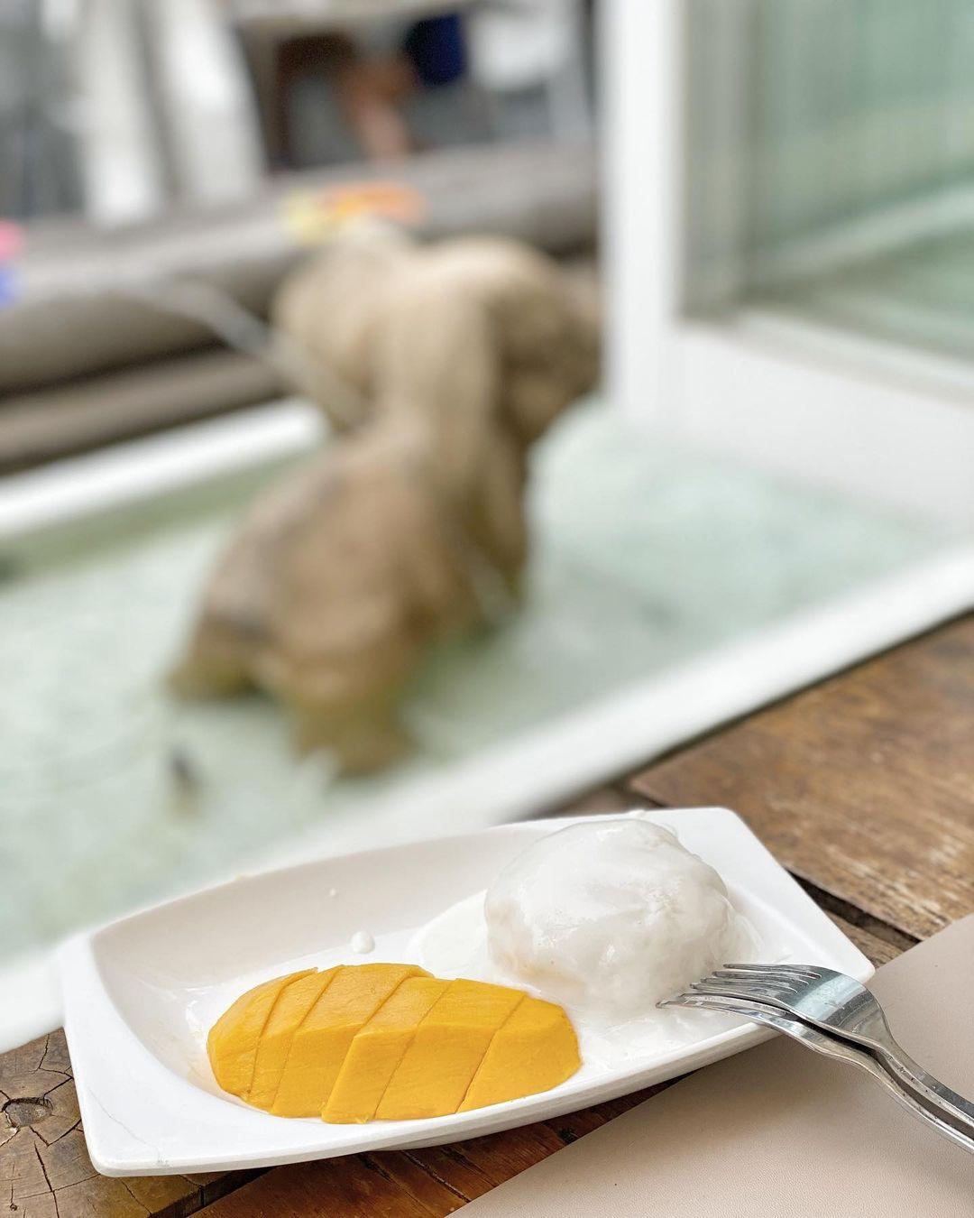 香甜的芒果糯米飯,飯後之選(圖片來源:IG@co.ff.ee.food.life)