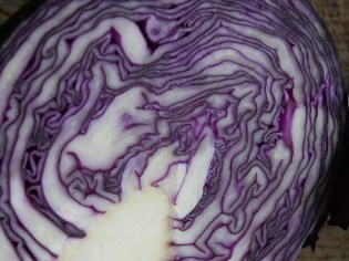 Red cabbage becomes more purple in neutral soils.