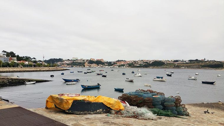 Fietsen Porto