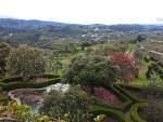 Lamego | Saudades de Portugal