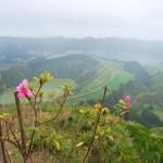 Zeven redenen voor een vakantie naar de Azoren