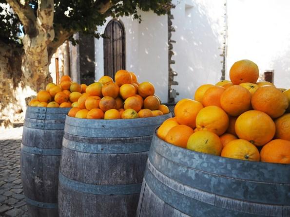 Sinaasappels Algarve