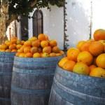 Sinaasappels uit de Algarve
