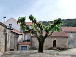 Castelo Novo | Saudades de Portugal