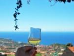 Eten Madeira | Saudades de Portugal