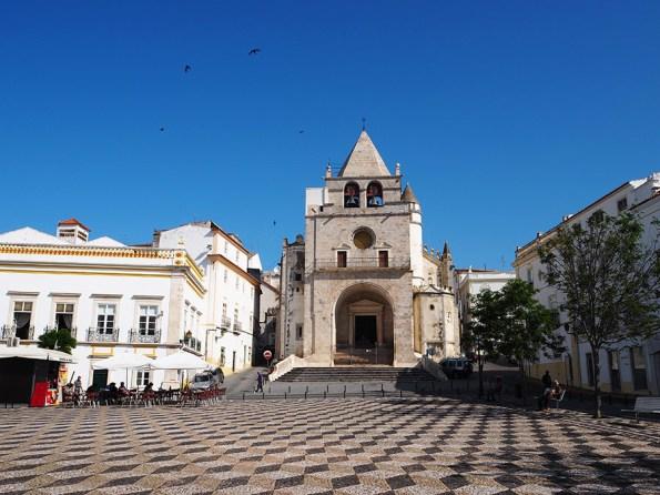 Portugese Pleinen