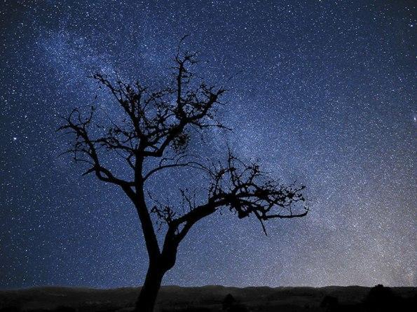 Dark Sky Alqueva | Saudades de Portugal