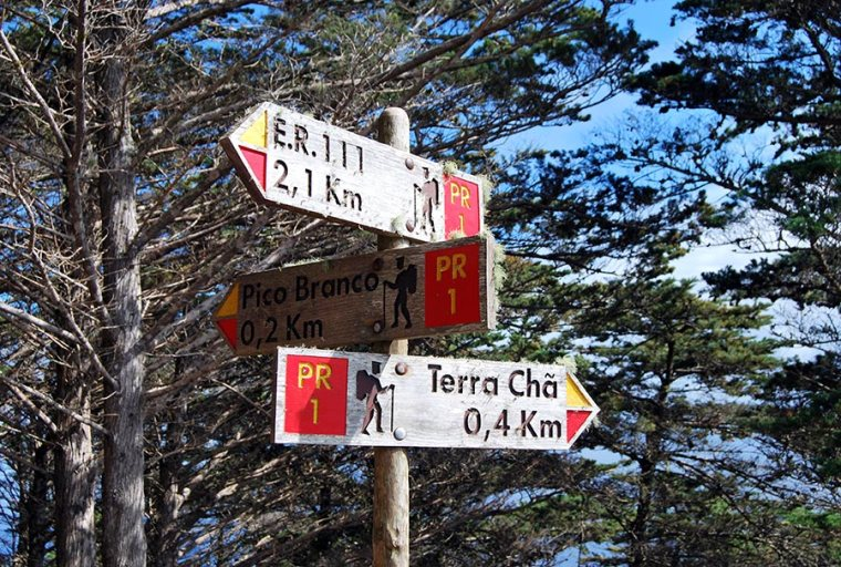 Pico Branco