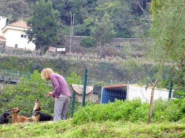 Op de Berg: Pick-up | Saudades de Portugal