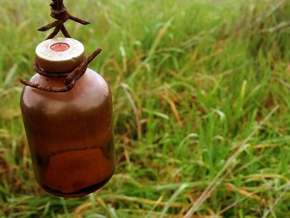 Platteland: Flesje Zonnestralen? | Saudades de Portugal