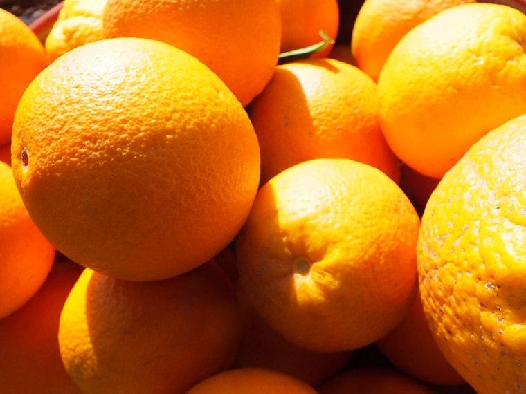 Brejeira: Sinaasappels | Saudades de Portugal