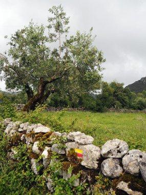 Serras de Aire e Candeeiros NP | Saudades de Portugal