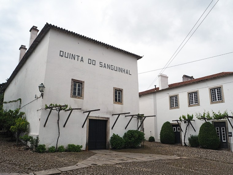 Quinta do Sanguinhal | Saudades de Portugal