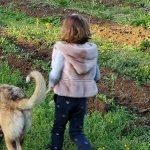Hello Casa Oliveira: het Portugese Platteland