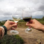 Ontdek Portugese wijnen bij wijnHALL