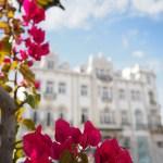 Bijzonder Slapen: Grand House Algarve