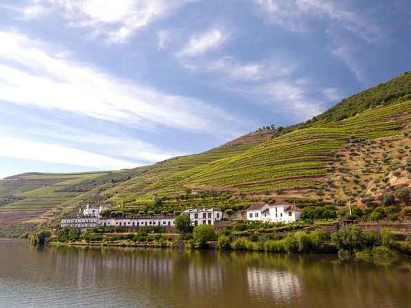 In the Mood for Douro