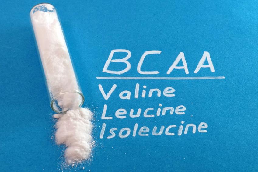 BCAA para Evitar o Catabolismo