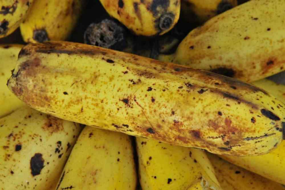 diabéticos podem comer banana
