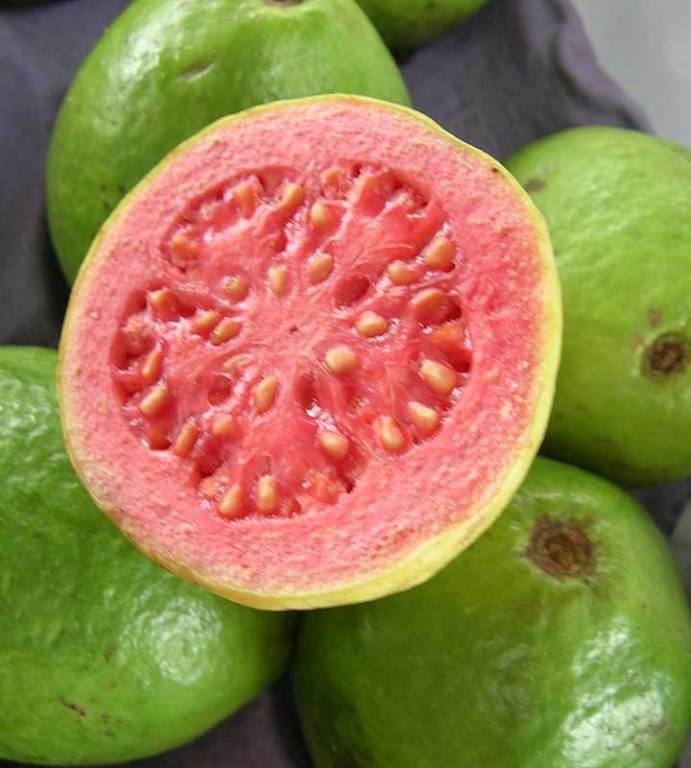 Frutas Para Diabéticos  Quais Comer e Quais Evitar   77fa8fad7e8