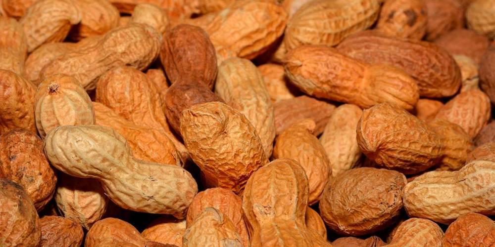 amendoim com casca