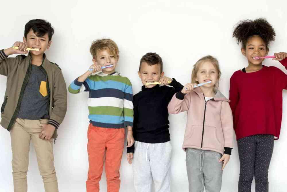 escova dental elétrica professional care 500