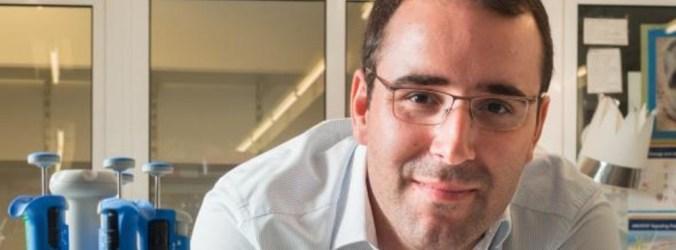 Investigadores portugueses modificam anfetamina para perda de peso sem efeitos secundários