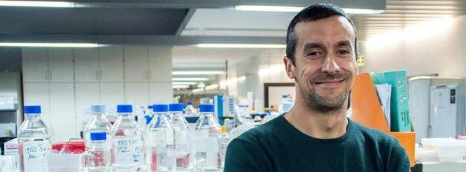 Entrevista. Projeto estuda nanodiamantes para deteção precoce de Parkinson